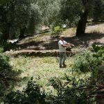 Καθαρίζοντας τους κήπους στο παλιό σχολείο μαζί με τον Freddo.