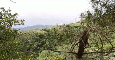 Ο Άγιος Γεώργιος στο Λάγγος